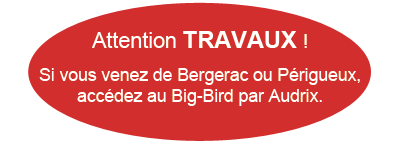 attention-bigbird